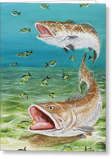 Pinfish Greeting Cards - Speckled Sea Trout Greeting Card by Vanuel Robertson