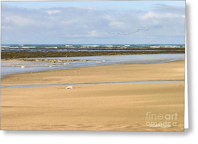 Spectacular Greeting Cards - Spectacular Shoreline Greeting Card by Michelle Wiarda