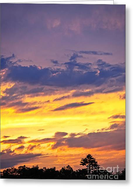Hues Greeting Cards - Spectacular sunset Greeting Card by Elena Elisseeva