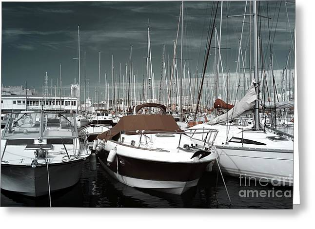 Boats In Harbor Greeting Cards - Speed in the Port Greeting Card by John Rizzuto