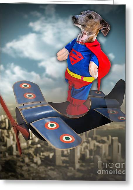 Speedolini Flying High Greeting Card by Kathy Tarochione