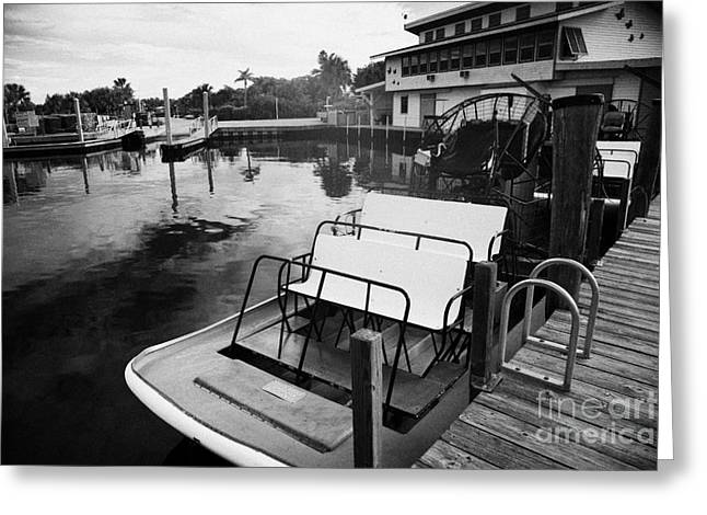 Downturn Greeting Cards - Speedys Airboat Rides In Everglades City Florida Greeting Card by Joe Fox