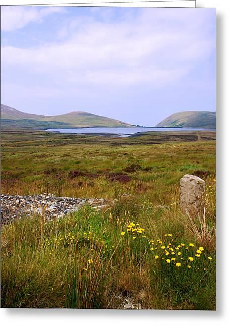 Jane Mcilroy Greeting Cards - Spelga Mourne Mountains Greeting Card by Jane McIlroy