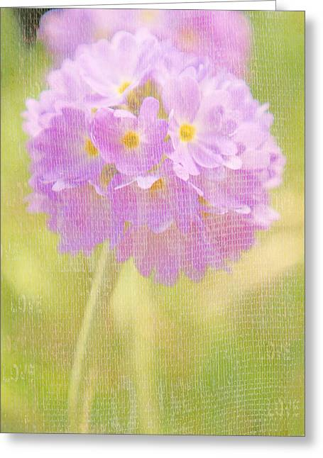 Textured Flower Greeting Cards - Sphere Florale - 01tt01a Greeting Card by Variance Collections