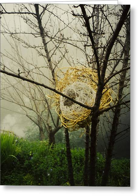 Grass Sculptures Greeting Cards - Sphere in Sphere Greeting Card by Daniel P Cronin