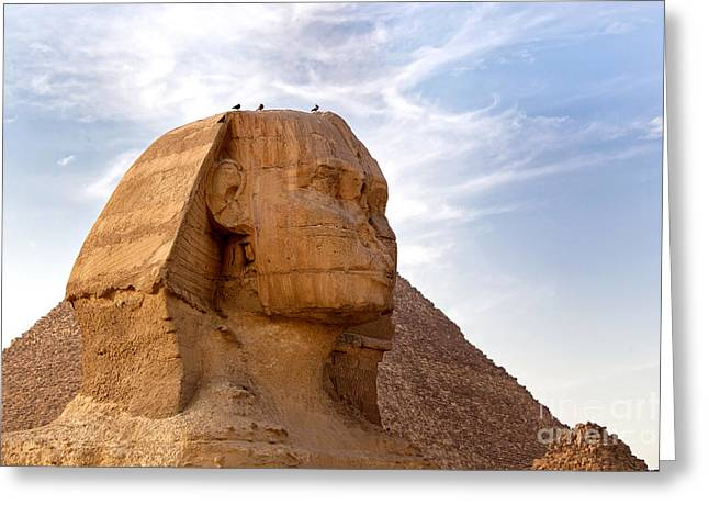 Ancient Tomb Greeting Cards - Sphinx Egypt Greeting Card by Jane Rix