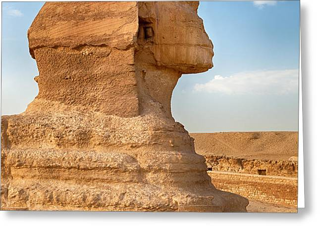 Sphinx profile Greeting Card by Jane Rix
