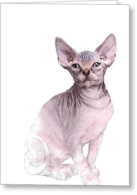 Sphynx Cat Prints Greeting Cards - Sphynx -2 Greeting Card by Gary Collett