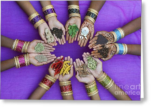 Bracelet Greeting Cards - Spices of India Greeting Card by Tim Gainey