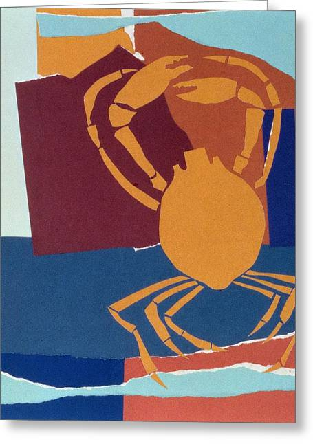 Flattened Greeting Cards - Spider Crab Greeting Card by John Wallington