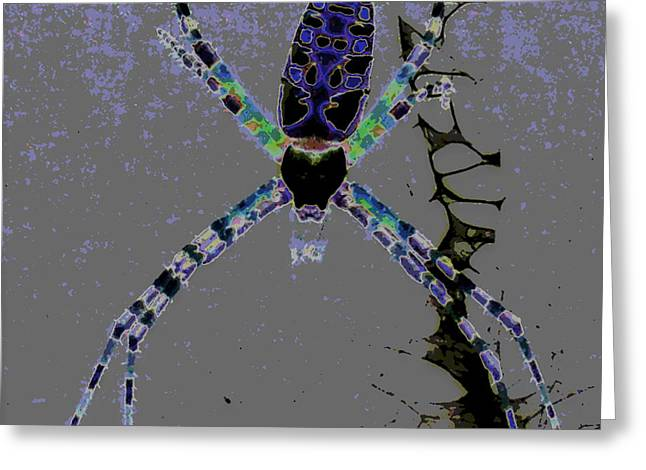 Spider Spider On The Wall Greeting Card by Rebecca Flaig