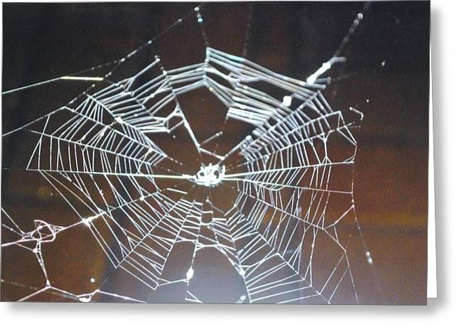 Spider Web Greeting Card by Robert Floyd
