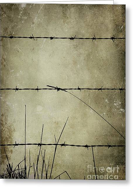 Spikey Wire Greeting Card by Svetlana Sewell