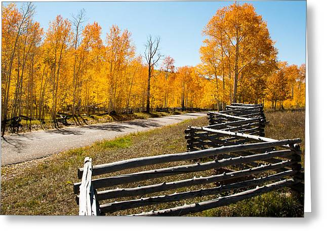 Geobob Greeting Cards - Spilt Rail Fence and Yellow Aspen Markagunt Plateau Utah Greeting Card by Robert Ford