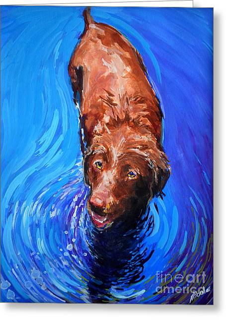Chocolate Labrador Retriever Greeting Cards - Spin Cycle Greeting Card by Molly Poole