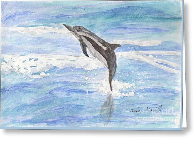 Pamela Meredith Greeting Cards - Spinner Dolphin Greeting Card by Pamela  Meredith