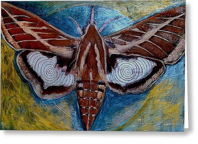 Cocoon Greeting Cards - Spiral Butterfly VII Greeting Card by Shira Chai