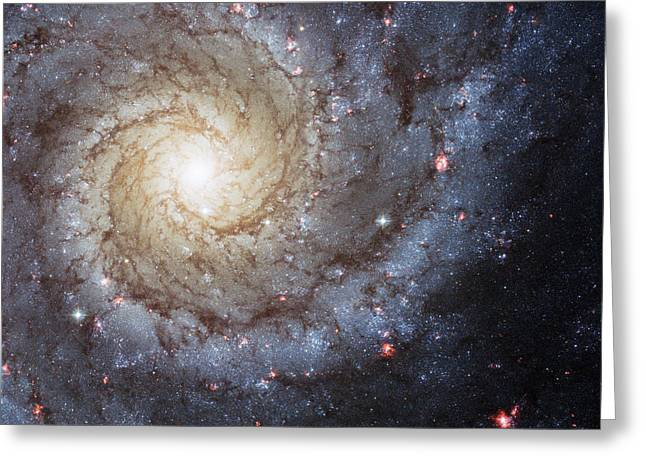 Deep Space Greeting Cards - Spiral Galaxy M74 Greeting Card by Adam Romanowicz