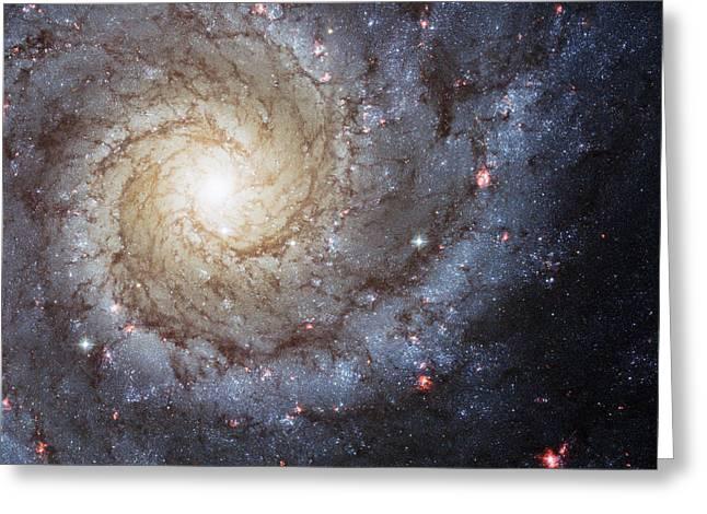Spiral Galaxy M74 Greeting Card by Adam Romanowicz