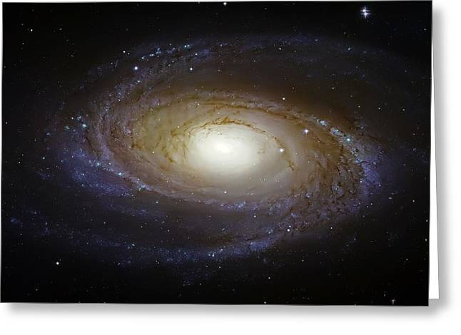 Constellation Greeting Cards - Spiral Galaxy M81 Greeting Card by The  Vault - Jennifer Rondinelli Reilly