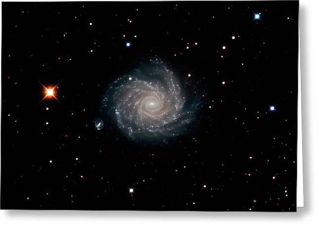 Spiral Galaxy Ngc 1232 Greeting Card by Damian Peach