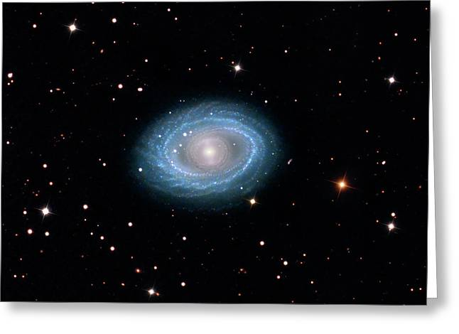 Spiral Galaxy Ngc 1398 Greeting Card by Damian Peach