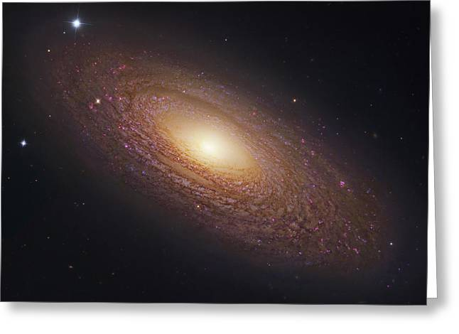 Glister Greeting Cards - Spiral Galaxy NGC 2841 Greeting Card by Celestial Images