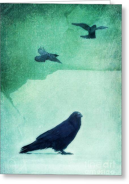 Raven Greeting Cards - Spirit Bird Greeting Card by Priska Wettstein