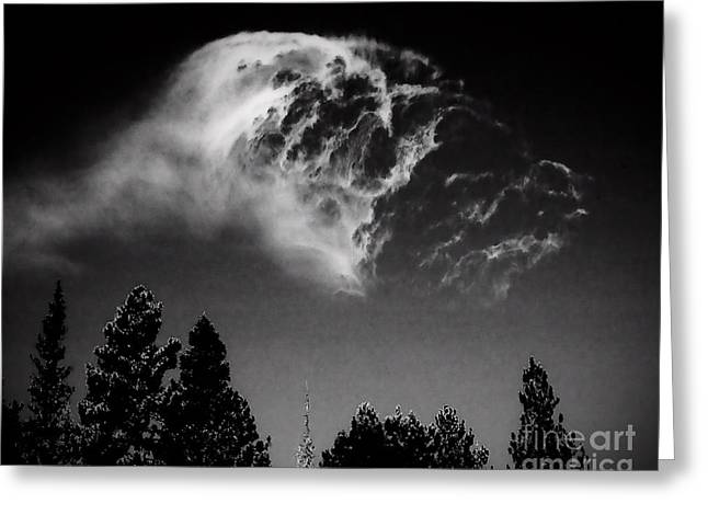 Monochrome Greeting Cards - Spirit in the Sky Greeting Card by Arne Hansen