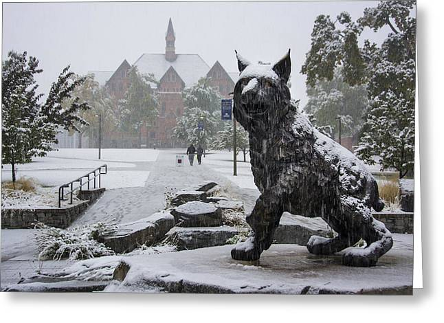 Best Sellers -  - Bobcats Photographs Greeting Cards - Spirit in the snow Greeting Card by Nick Garner