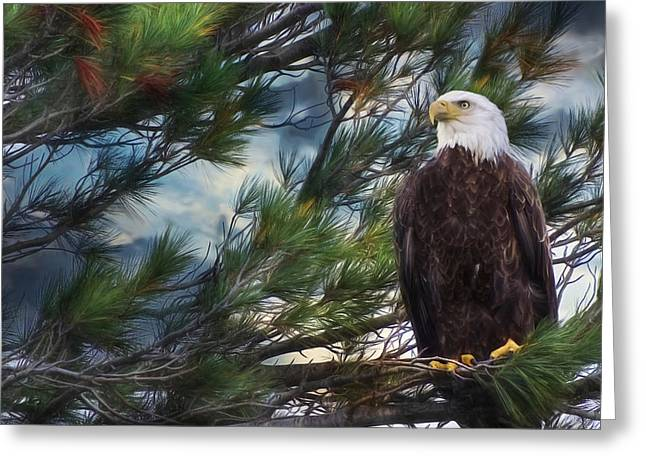 Bay St. Lawrence Greeting Cards - Spirit of Freedom Greeting Card by Lori Deiter