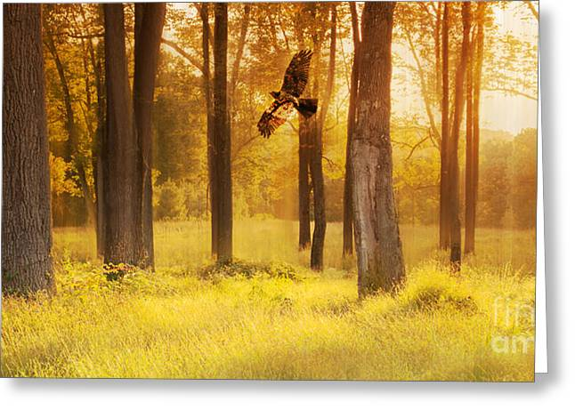 Spirit Of The Forest Greeting Card by Rima Biswas
