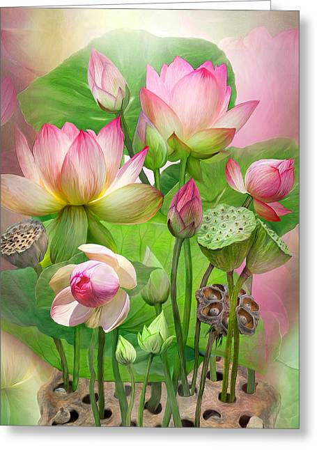 Pink Flower Prints Greeting Cards - Spirit Of The Lotus - SQ Greeting Card by Carol Cavalaris