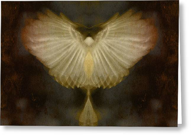 Wb Johnston Greeting Cards - Spirit Rising Greeting Card by WB Johnston