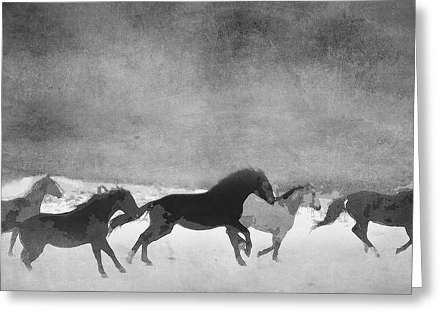 Horse Pictures Greeting Cards - Spirited Horse Herd Greeting Card by Renee Forth-Fukumoto
