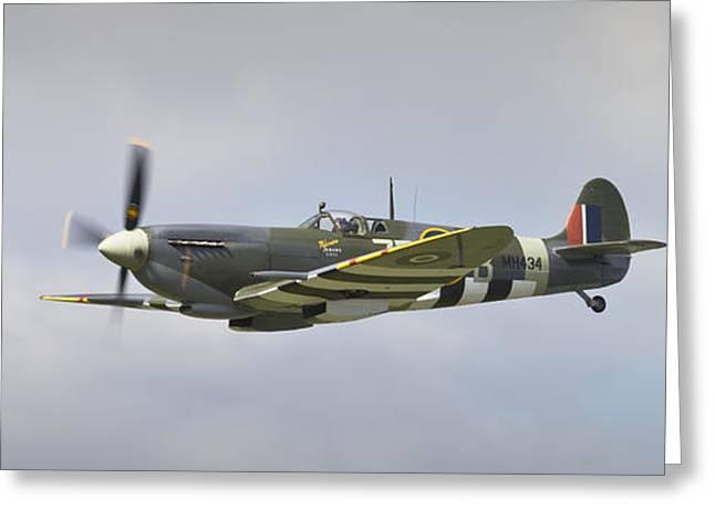 Spiteful Greeting Cards - Spitfire Fighter Plane Greeting Card by Maj Seda