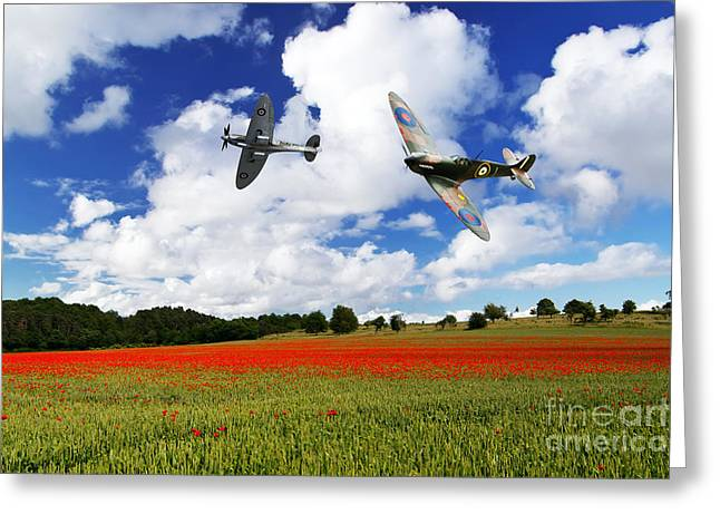 Spitfire Greeting Cards - Spitfire Poppy Fly Past  Greeting Card by J Biggadike