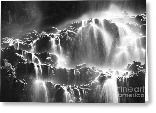 Gray Scale Greeting Cards - Splash Greeting Card by Idaho Scenic Images Linda Lantzy