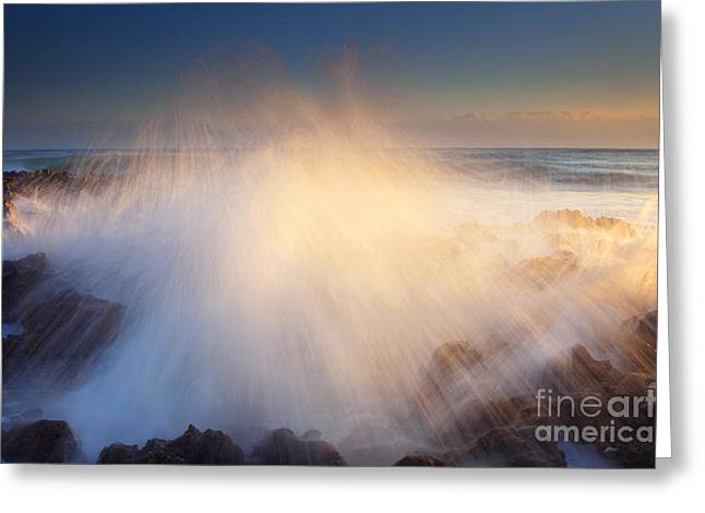 Coral Greeting Cards - Splash Greeting Card by Mike  Dawson