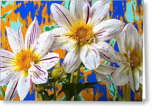 Fireworks Greeting Cards - Splash of color Greeting Card by Garry Gay