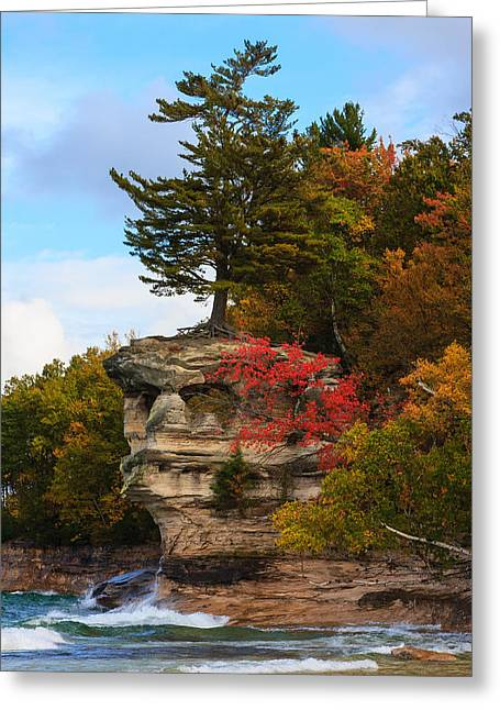 James Marvin Phelps Greeting Cards - Splash Of Color Greeting Card by James Marvin Phelps