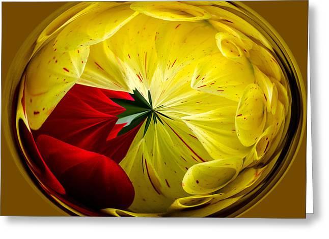 Floral Digital Art Digital Art Greeting Cards - Splash Of Red Greeting Card by Jordan Blackstone