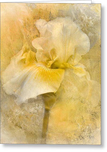 Splash Of Spring Greeting Card by Jai Johnson