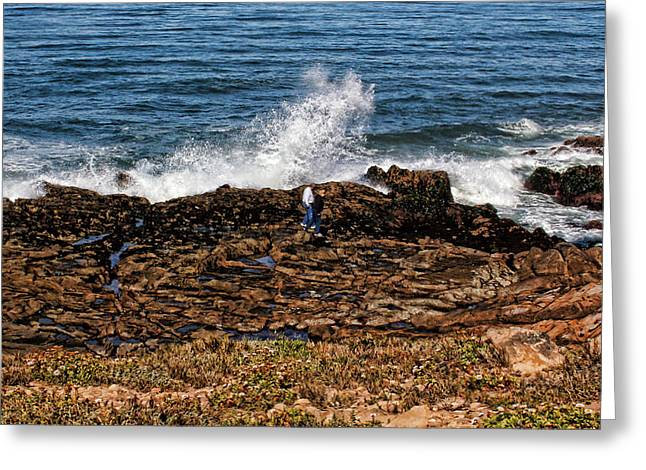 Cambria Greeting Cards - Splash Zone Greeting Card by Judy Vincent