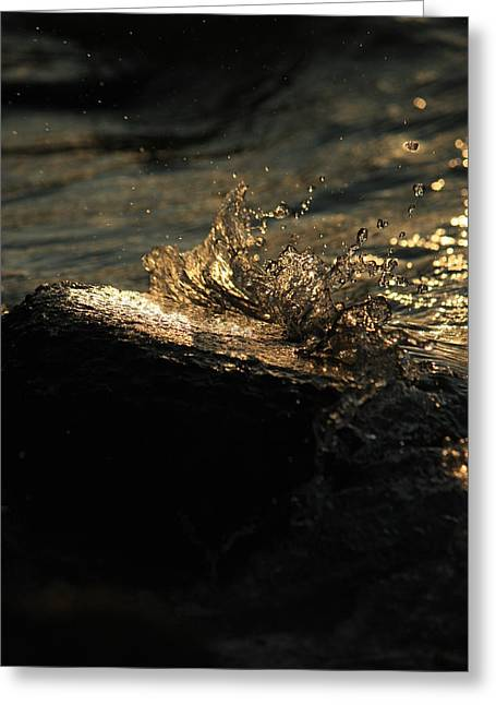 Reflections In River Greeting Cards - Splash05 Greeting Card by Mandy Shupp
