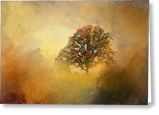 Fall Scenes Greeting Cards - Splendor Greeting Card by Jai Johnson