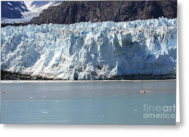 Alaska Photography Greeting Cards - Splendor of Alaska Greeting Card by Sophie Vigneault