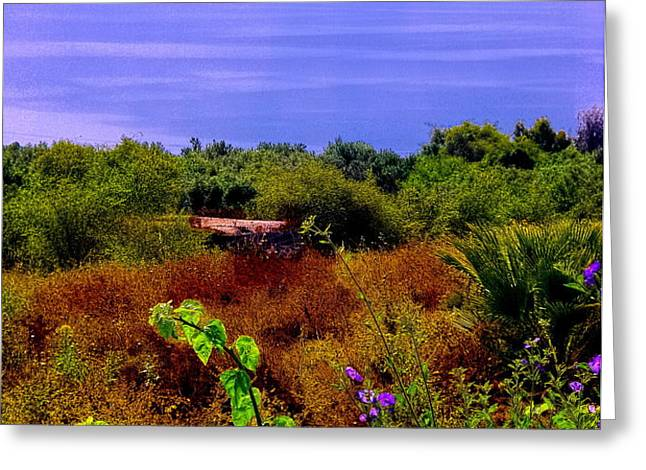 Splendor of the Mount of Beatitudes and the Sea of Galilee Greeting Card by Sandra Pena de Ortiz