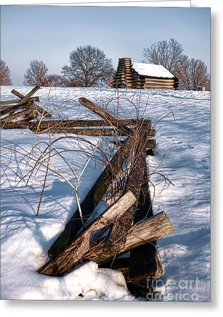 Philadelphia History Greeting Cards - Split Rail and Nation Greeting Card by Olivier Le Queinec