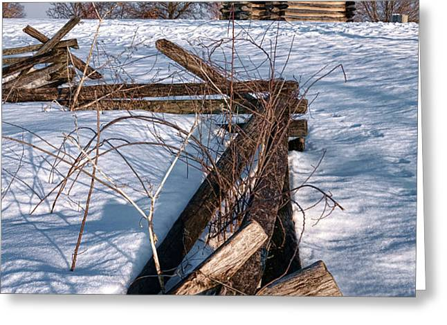 Split Rail and Nation Greeting Card by Olivier Le Queinec
